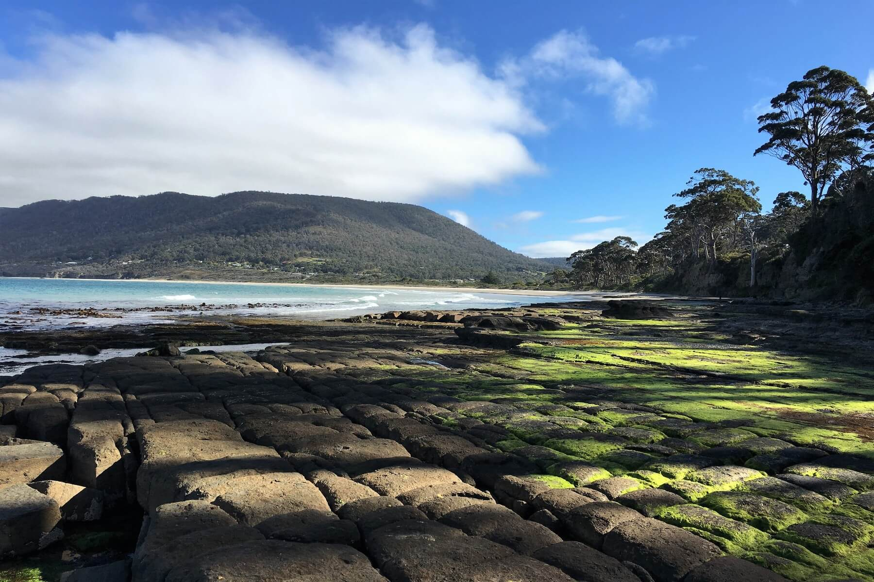 Stunning display of mother natures work with rock formation at the Tessellated Pavement